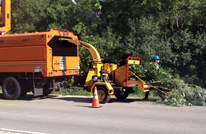 Commercial Tree Services-Lauderdale Lakes FL Tree Trimming and Stump Grinding Services-We Offer Tree Trimming Services, Tree Removal, Tree Pruning, Tree Cutting, Residential and Commercial Tree Trimming Services, Storm Damage, Emergency Tree Removal, Land Clearing, Tree Companies, Tree Care Service, Stump Grinding, and we're the Best Tree Trimming Company Near You Guaranteed!