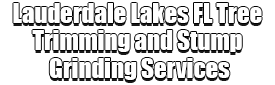 Lauderdale Lakes FL Tree Trimming and Stump Grinding Services Logo-We Offer Tree Trimming Services, Tree Removal, Tree Pruning, Tree Cutting, Residential and Commercial Tree Trimming Services, Storm Damage, Emergency Tree Removal, Land Clearing, Tree Companies, Tree Care Service, Stump Grinding, and we're the Best Tree Trimming Company Near You Guaranteed!